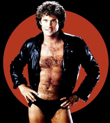 david-hasselhoff-gayumbeitor-ladies-man.jpg