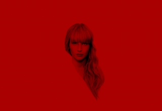 red sparrow gorrion rojo